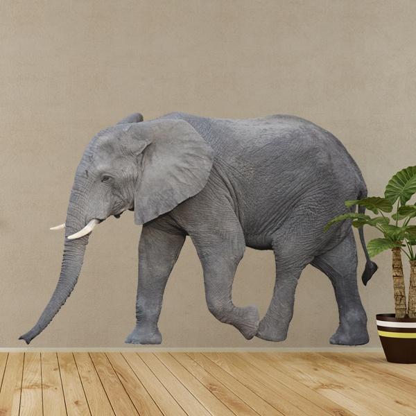 Vinilos Decorativos: Elefante 2