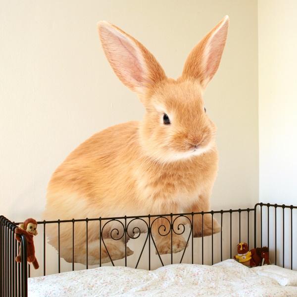 Vinilos Decorativos: Conejo