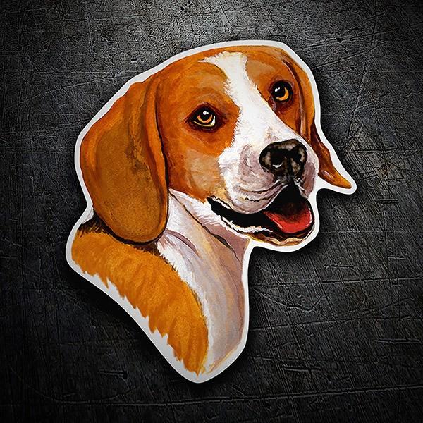 Pegatinas: Beagle