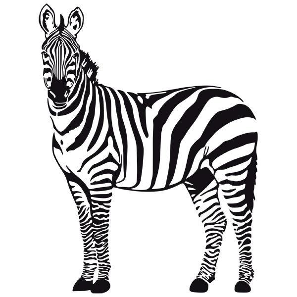 Zebra O Cebra Yahoo Vinilo decorati...