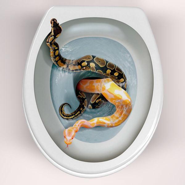 Vinilos Decorativos: Serpientes saliendo de la taza del wáter