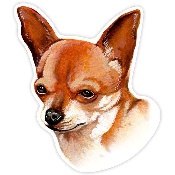 Pegatinas: Smooth Chihuahua