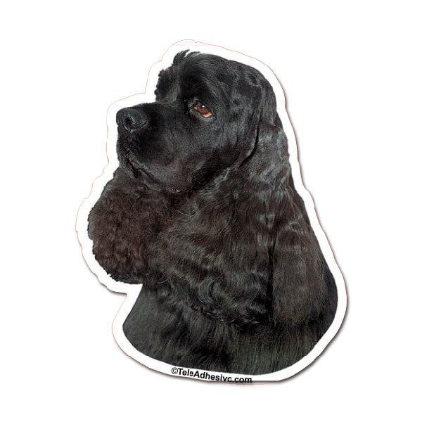 Pegatinas: Black Cocker Spaniel
