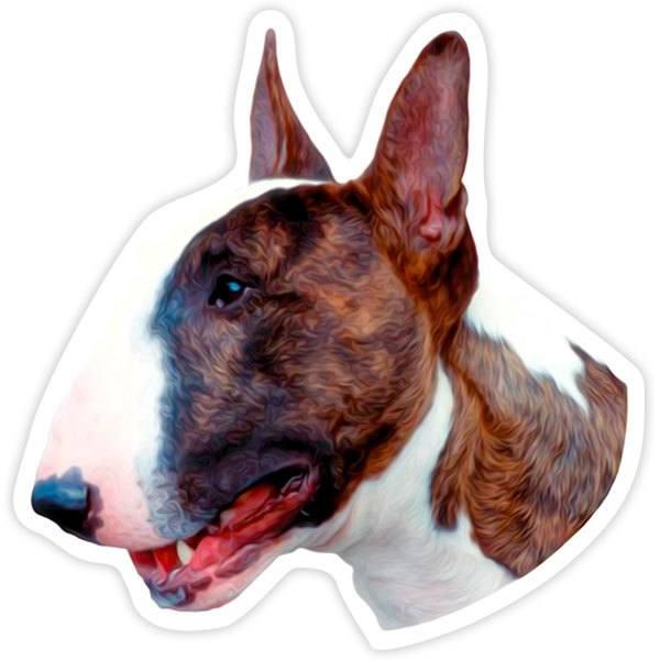 Pegatinas: Bull Terrier