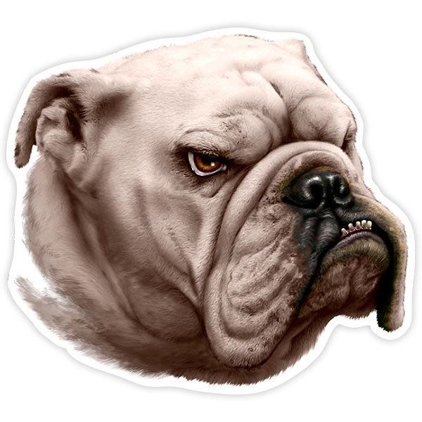 Pegatinas: Bulldog