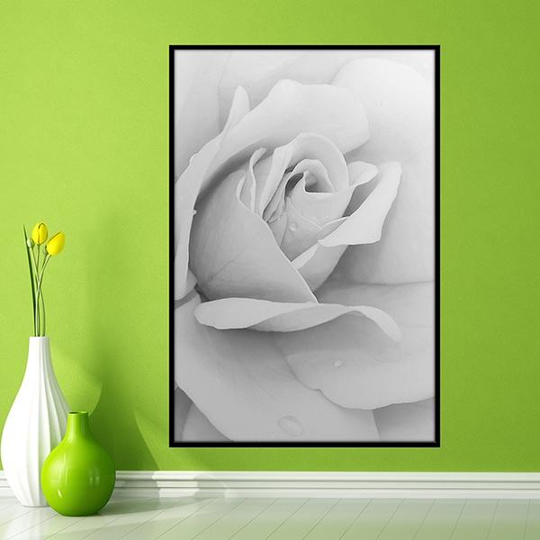 Vinilos Decorativos: Rosa Blanca