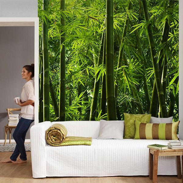 Fotomurales: Bambú