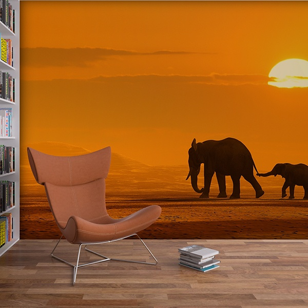 Fotomurales: Elefantes