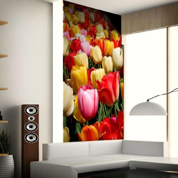 Fotomurales: Tulipanes