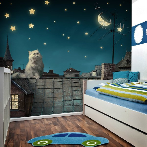 Fotomurales: Gato en el tejado