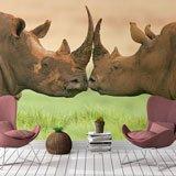 Fotomurales: Rinocerontes