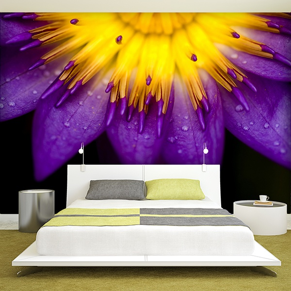 Fotomurales: Loto purpura