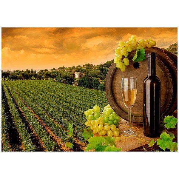 Fotomurales: Viñas y botellas