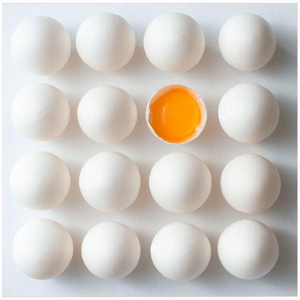 Fotomurales: Huevos