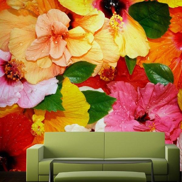 Fotomurales: Flores de Colores
