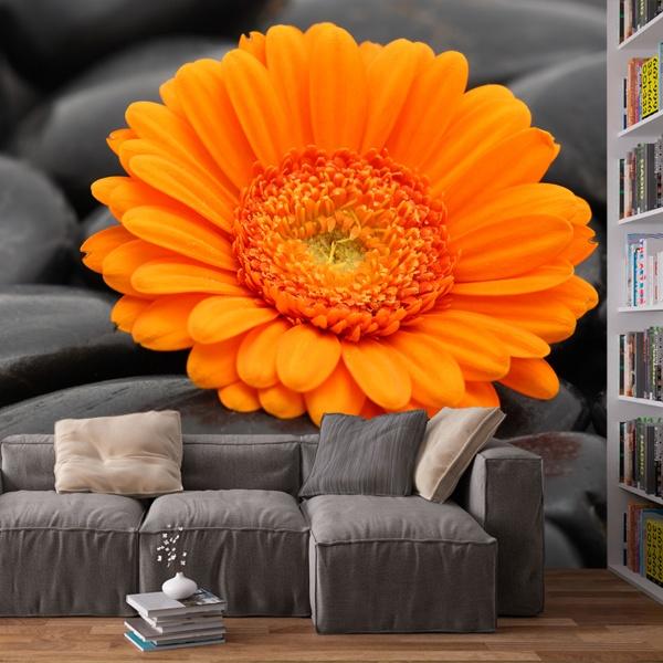 Fotomurales: Flores 17