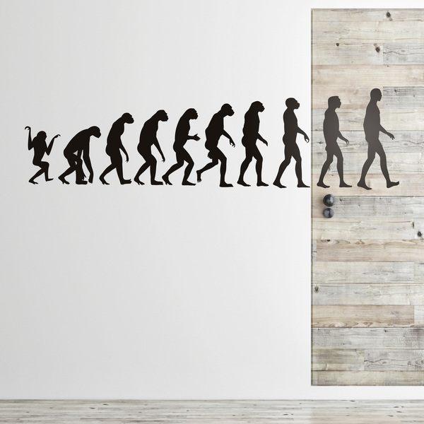 Vinilos Decorativos: Evolution