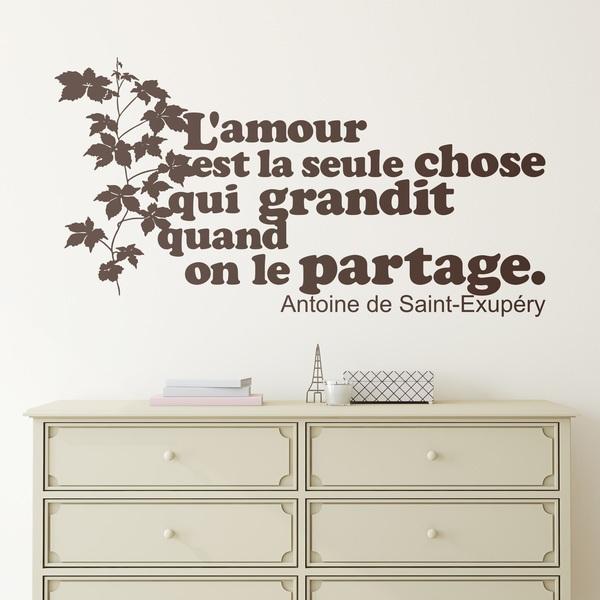 Vinilos Decorativos: L amour est la seule chose qui grandit...