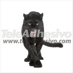 fotomurales-pantera-negra
