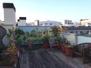 terrazas1