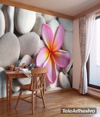 fotomurales-piedra-flor