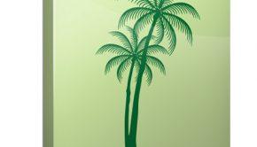 Las palmeras se asocian a playa