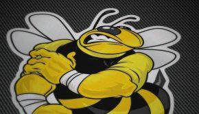 pegatinas-coches-motos-abeja