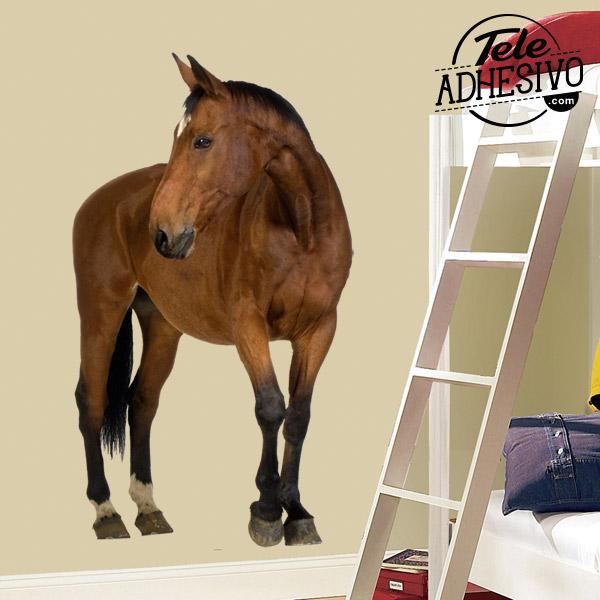Fotomural caballo marrón para la pared