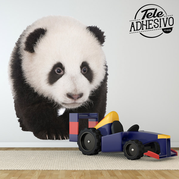 Fotomural osezno panda para la pared