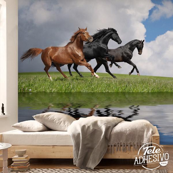 Fotomural caballos para regalo de comunión