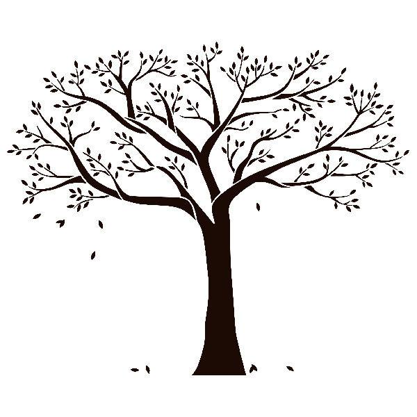 Vinilo Decorativo De árbol Genealógico Familiar