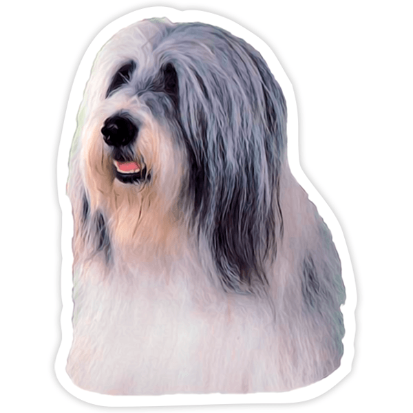 Pegatinas: Bearded Collie