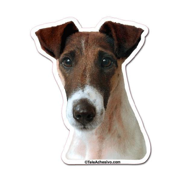 Pegatinas: Smooth Fox Terrier