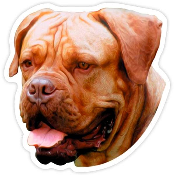 Pegatinas: Dogue De Bordeaux