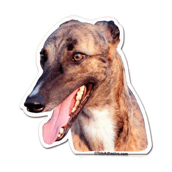 Pegatinas: Greyhound