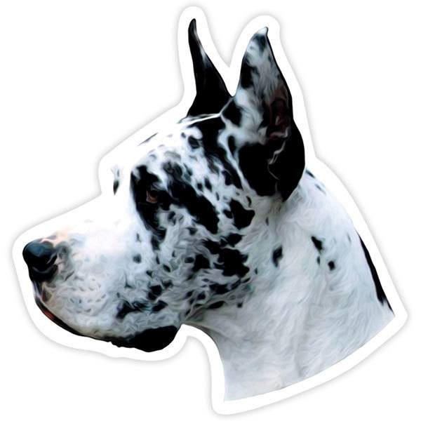 Pegatinas: Harlequin Great Dane