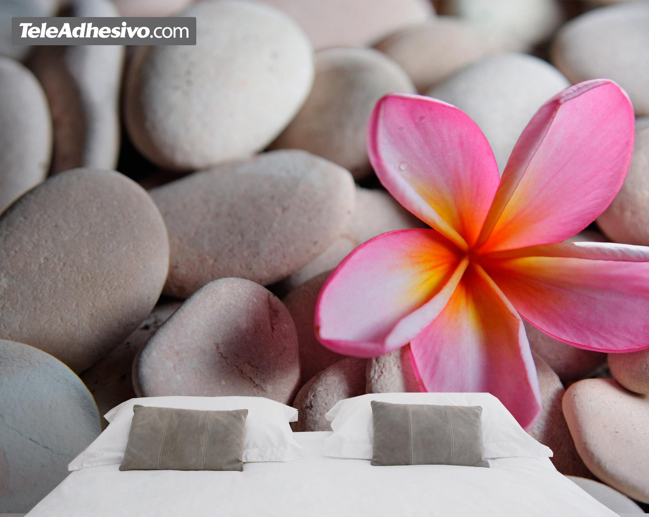 Piedra flor Fotos piedras zen
