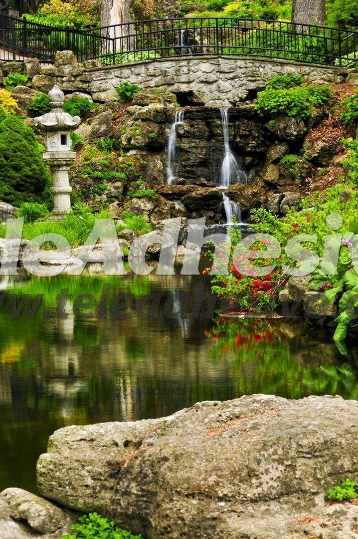 Fotomural jard n imperial for Jardin imperial