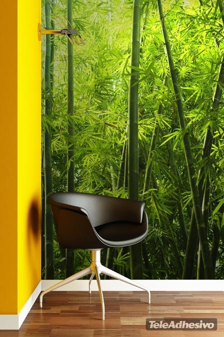 Bambu texture for Fotomurales naturaleza