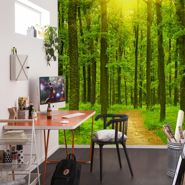 Fotomurales de paisajes for Murales de tela para pared