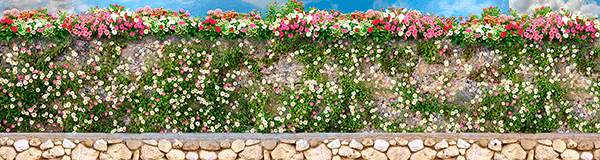 Fotomurales: Pared con flores