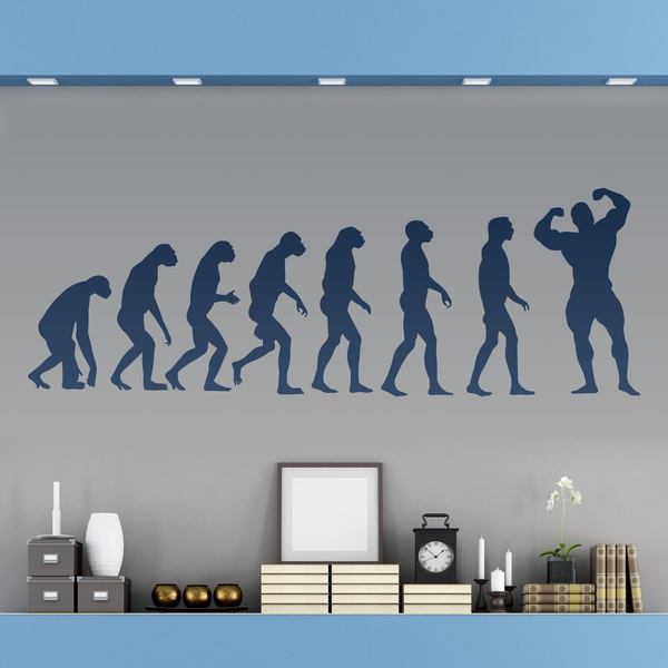 Vinilos Decorativos: Evolution Muscle