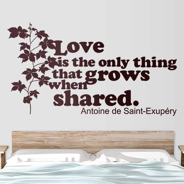 Vinilos Decorativos: Love is the only thing that grows...