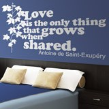 Vinilos Decorativos: Love is the only thing that grows... 2