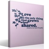 Vinilos Decorativos: Love is the only thing that grows 3