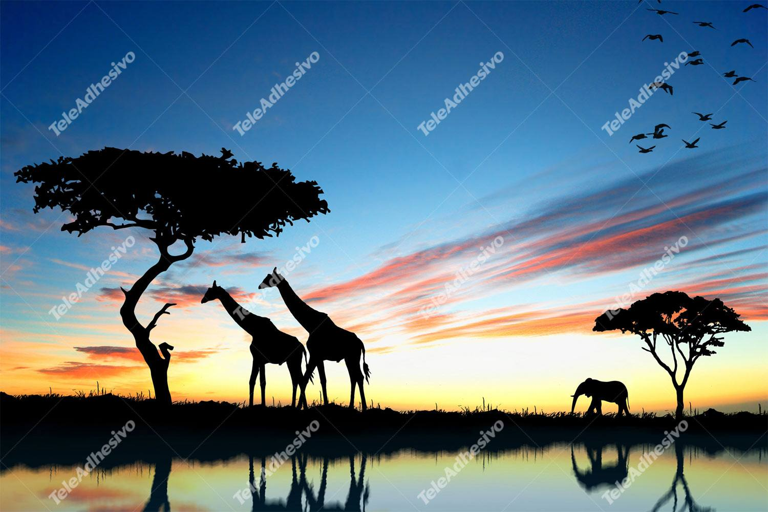 Fotomurales: Atardecer africano