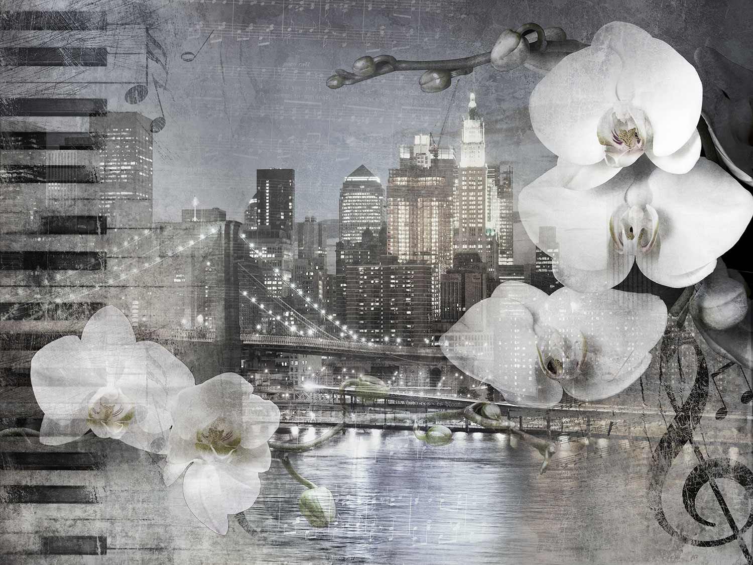 Fotomurales: Collage Orquídeas en Nueva York